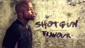 Shotgun Flava - Flavour